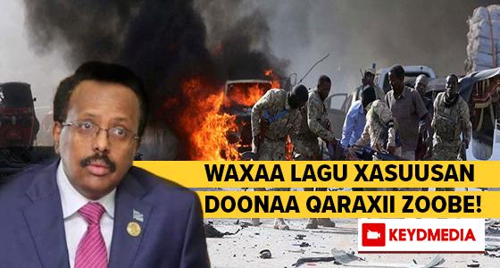 Farmaajo waxaa lagu xasuusan doonaa Qaraxii Zoobe!