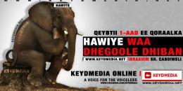 HAWIYE WAA DHEGOOLE DHIBAN
