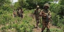 Al-Shabaab iyo ciidamada Kenya oo Jubbada Hoose ku dagaalamay