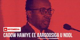 Cadowga Hawiye ee aargoosiga u ciil-qaba