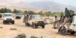 Puntland oo xubno Al-Shabaab ah qabatay
