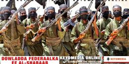 Dowladda Federaalka ee Al-Shabaab