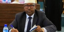 Agaasimihii Hay'adda Nabadsugida Qaranka Dr. Axmed Macalin oo Iscasilay