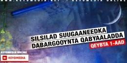 Silsilad Suugaaneedka Dabargooynta Qabyaaladda - Gabaygii Koowaad