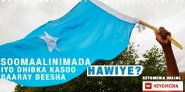 Soomaalinimada iyo dhibka kasoo gaaray Beesha Hawiye! - Qeybta Koowaad