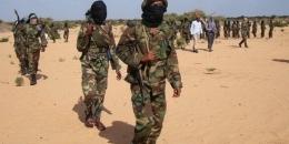 Al-Shabaab oo xubno sare looga dilay dagaal