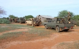 Hundreds of militants killed in ops by Somali forces