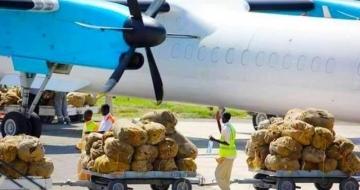 Somalia Becomes Top Buyer of Ethiopia's Exports