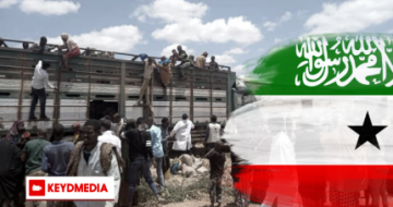 UN: 7,250 people forcibly expelled from Somaliland in 15 days