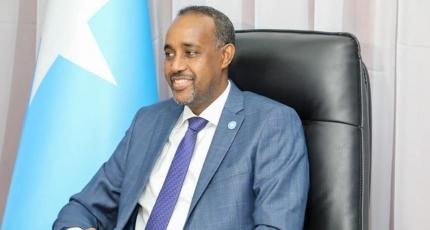Somali PM sets up team to probe civilian massacre