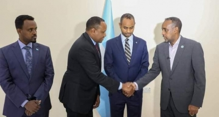 Somalia's new security minister takes office amid mounting political crisis