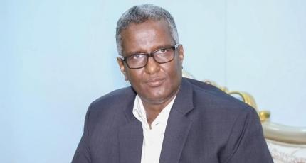 Somalia's opposition calls for limitation of power