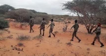 Dagaallo dhex maray ciidamda dowladda iyo Al-Shabaab