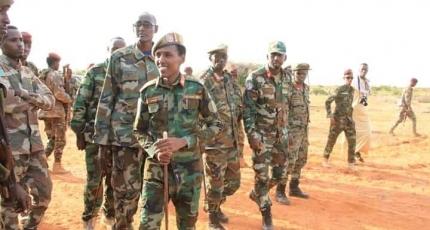 Somali military says seven militants killed in raids