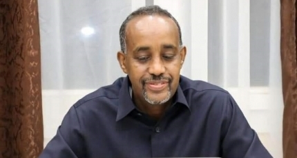 Somali PM holds e-meeting with regional leaders to evaluate election