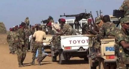 DF oo sheegatay in ay dileen dagaalyahanno ka tirsan Al-Shabaab