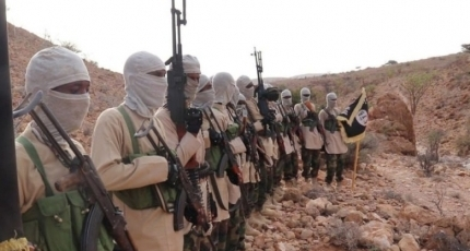 ISIS, Al-Shabaab foreign fighters killed in Somalia operations