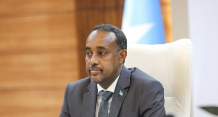 Somali PM nullifies election of poll team after division