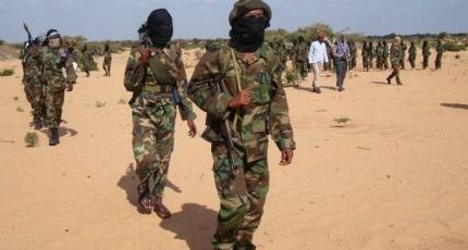 DFS: Waxaan dilnay xubno ka tirsan Al-shabaab