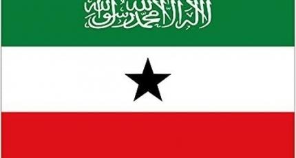 Digniin loo diray xubnaha Somaliland ku metala DFS
