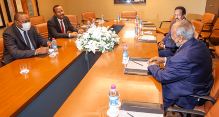 IGAD says no evidence that Kenya interfered in Somalia's affairs
