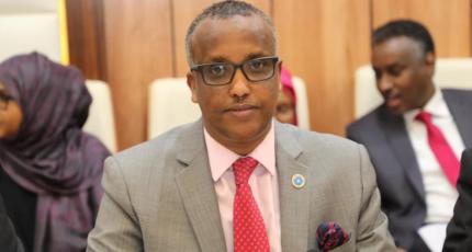 Somalia reacts to Kenya's decision to halt flights