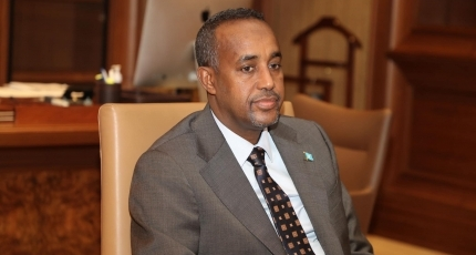 Somali PM appoints members of electoral bodies
