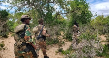 Somali army kills nearly 100 militants in offensive