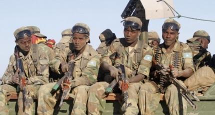 Somali army says dozens of terrorists killed in operation