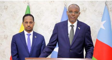 Ethiopian ambassador visits Southwest state of Somalia