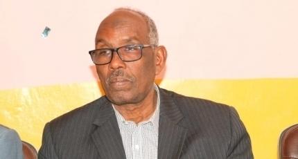 Somali Regional Minister Rejects Dismissal