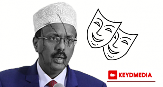 Farmaajo: We Have No One Else to Blame