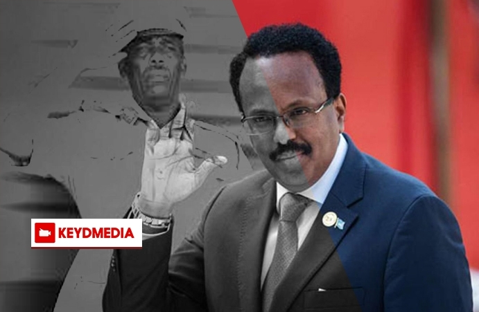 Somali President Farmajo Disregarded the Constitution and Embraced Dictator's Playbook