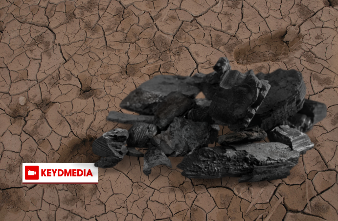 Demand for charcoal is fuelling desertification and drought in Somalia
